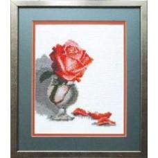 Набор для вышивания  арт.ЧМ.А111 (16x20 см)