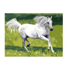 Картины по номерам Molly арт.G369 Летом В Поле (15 Красок) 40х50 см