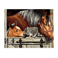 Картины по номерам Molly арт.EX5284 Друзья (19 Красок) 30х40 см